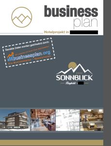 Beispiel-Businessplan